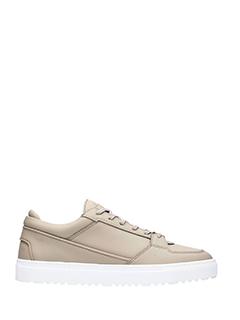 Etq .-Sneakers Low  in pelle  grigia