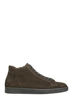 Andy Parker-Sneakers in camoscio marrone